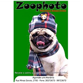 zoophoto.png