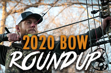 Issue 118: 2020 Bow Roundup