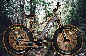 EHJ 176: E-Bikes