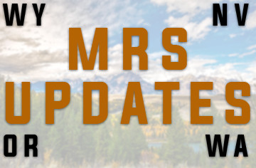 Issue 178: MRS UPDATES