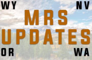 Issue 178: MRS UPDATES