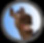 Wix_SS_logo.png