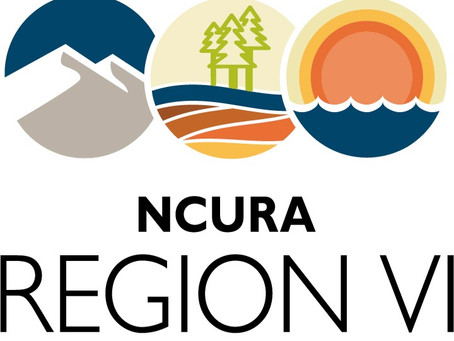 Call for Applications | Travel Awards | 2021 Hybrid NCURA 63rd Annual Meeting