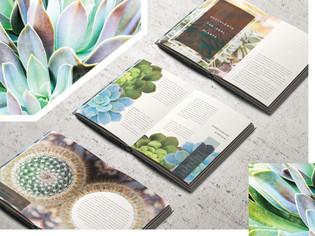 Cacti & Succulents Book