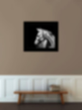 framed horse prints, framed equine prints, framed fine equine prints, Horse photographer, Horse photography, Horse pictures, Equine Photography, EqSP Equine Studio Photography, horse photography, Equine Photography, Horse Photographer, Horse Portraits, Horse Portrait Services, Horse photoshoot, Equine portraits, equine photoshoot, equine photography services, framed fine horse art prints, framed prints, horse photo framing, equine framing, contemporary panels, equine panels, contemporary horse panel, contemporary equine panels, horse panels,