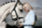 EqSP Equine Studio Photography Logo, EqSP Equine Studio Photography, horse photography, Equine Photography, Horse Portraits, Horse Portrait Services, Horse photoshoot, Equine portraits, equine photoshoot, equine photography services, professional horse photographer,  professional equestrian photoshoot,