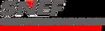 snef-logo.png