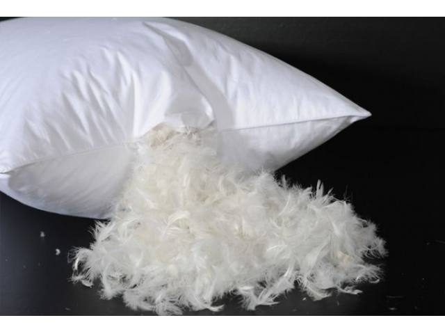 feather-pillow