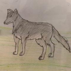 Asana  (Grade 5)