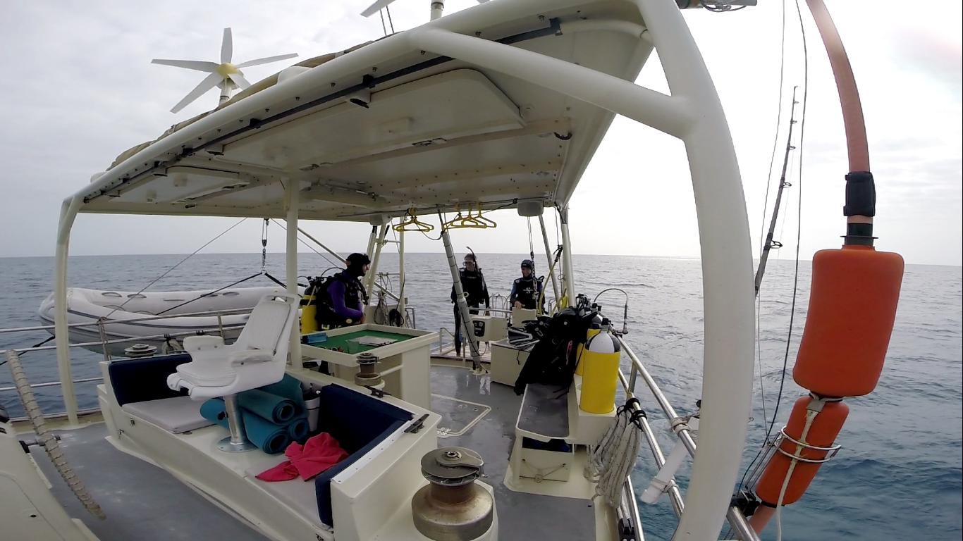 Dive deck 2.png