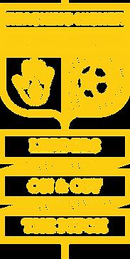 RH_Football_Academy_Logo_Yellow (1).png