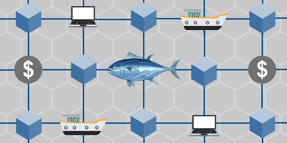 Increasing the Transparency of the Seafood Supply Chain