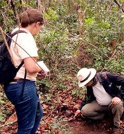 sitio Arqueológico em Guarapari