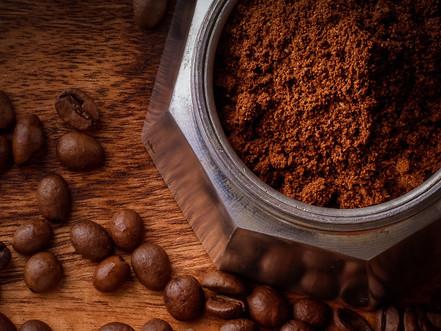 Como usar borra de Café em jardinagem