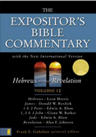 The Expositor's Bible Commentary XII.png
