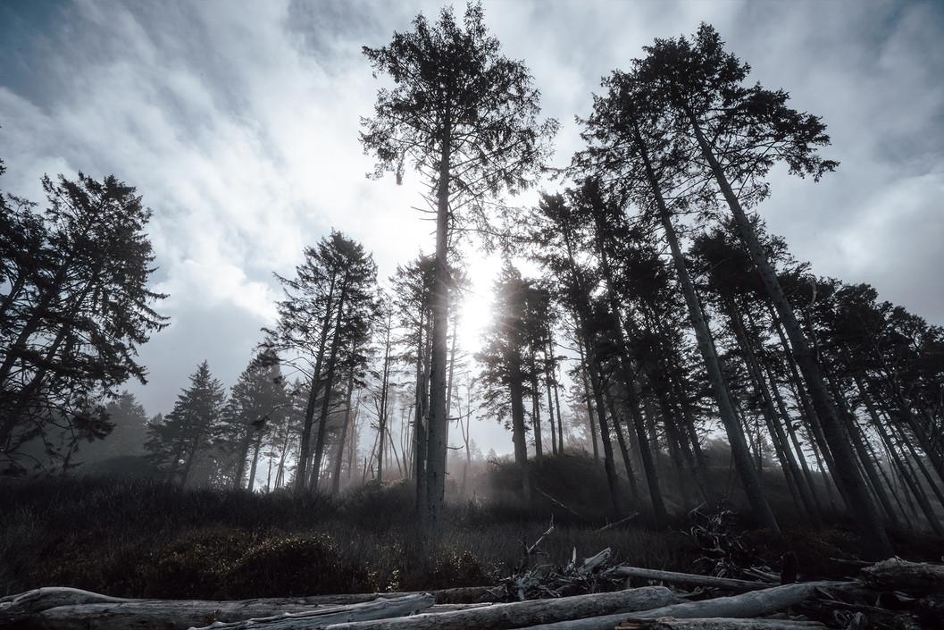 nature_rubybeach.jpg