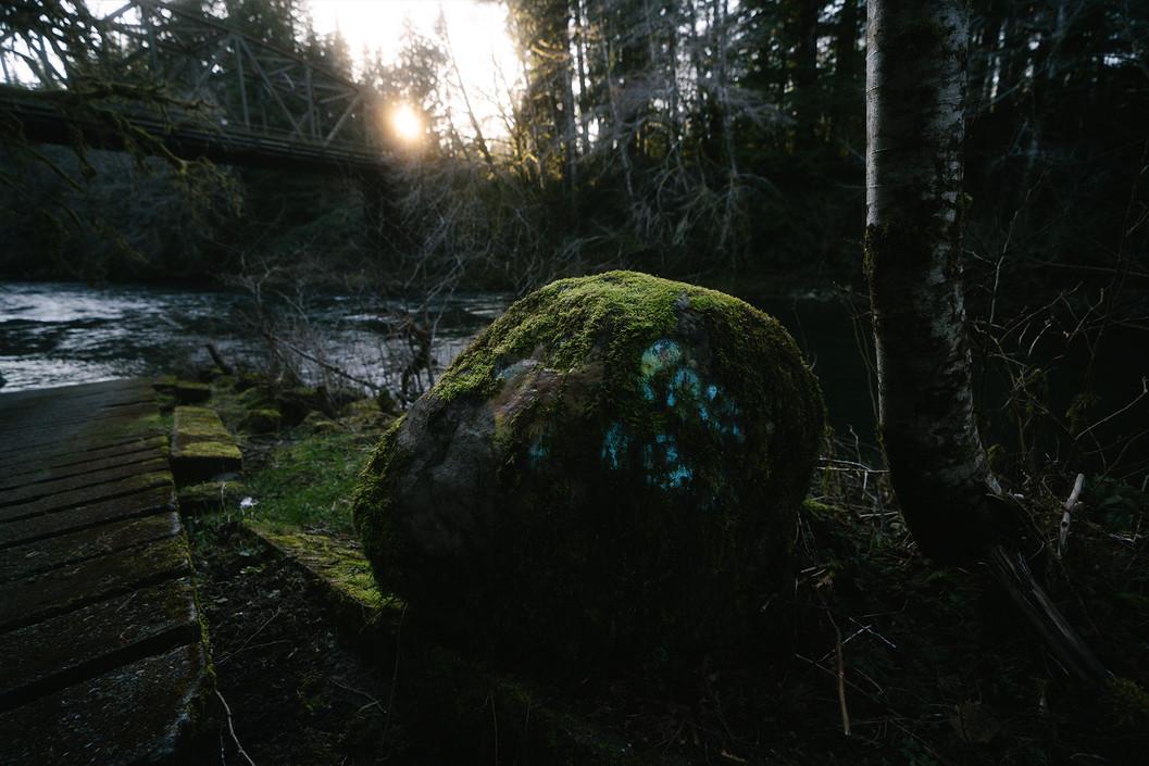 nature_forksWA.jpg