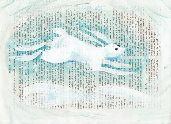 Snow Hare A5 Print