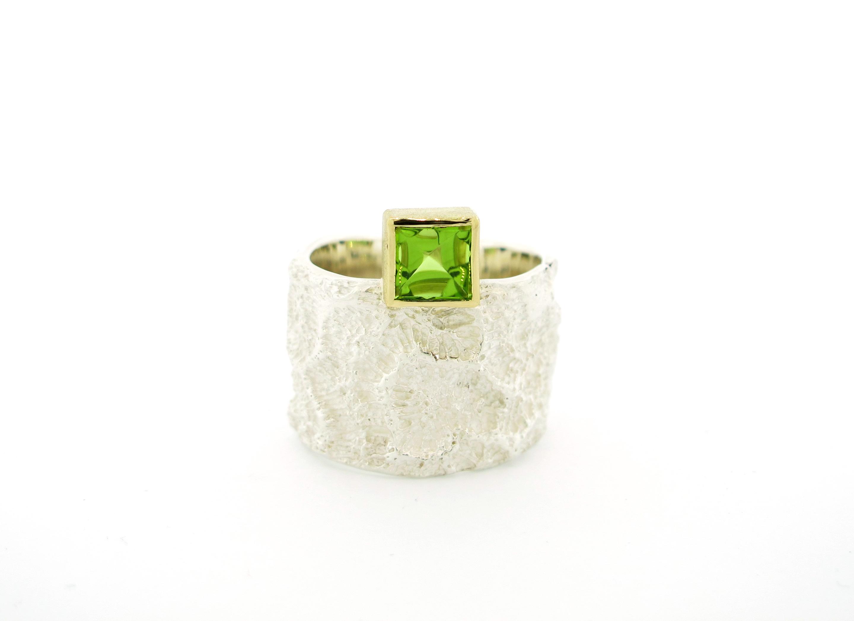 ring CM breed met groen huis