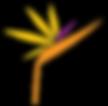 papagájvirág_színes.png