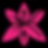 liliom_pink.png