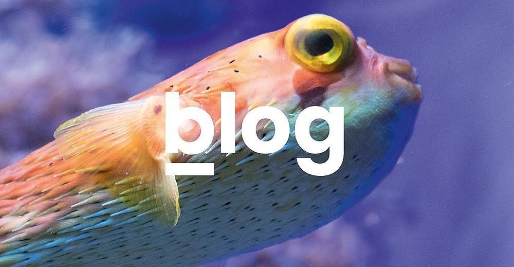 breitband blog