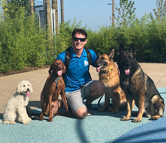 5 Star Dog Training in Tulsa Oklahoma