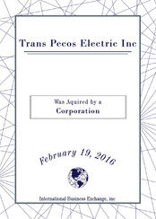 Trans Pecos Electric Inc.