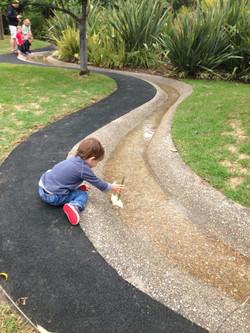 Royal Botanic Gardens 5