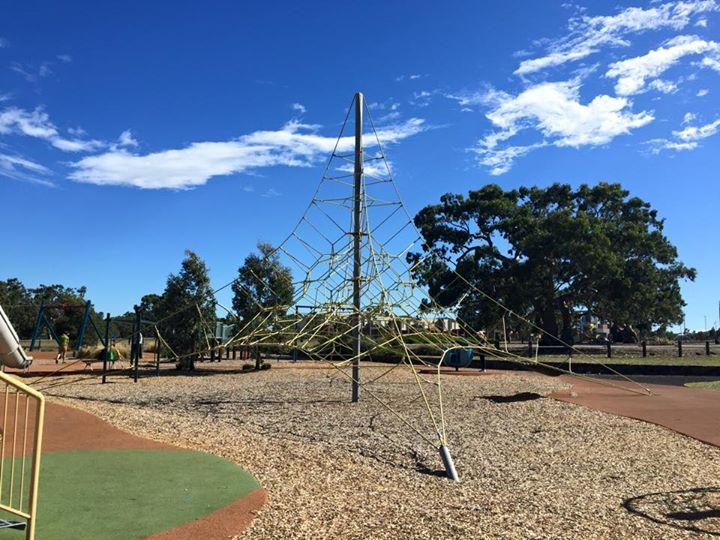 Golden Sun Moth Playground