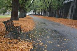 Gardens in Autumn