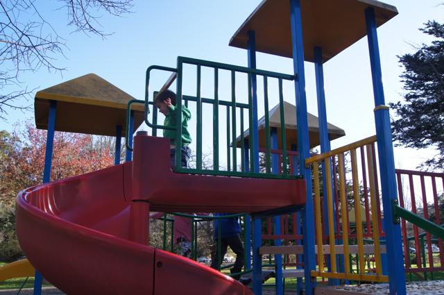 Queens Park, Healesville
