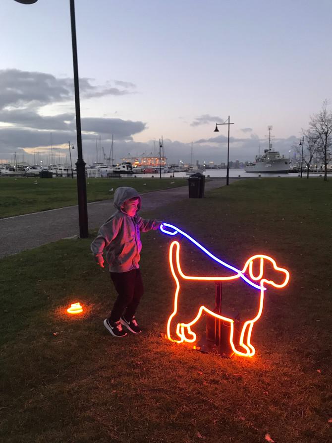 Neon Dog Park, Williamstown