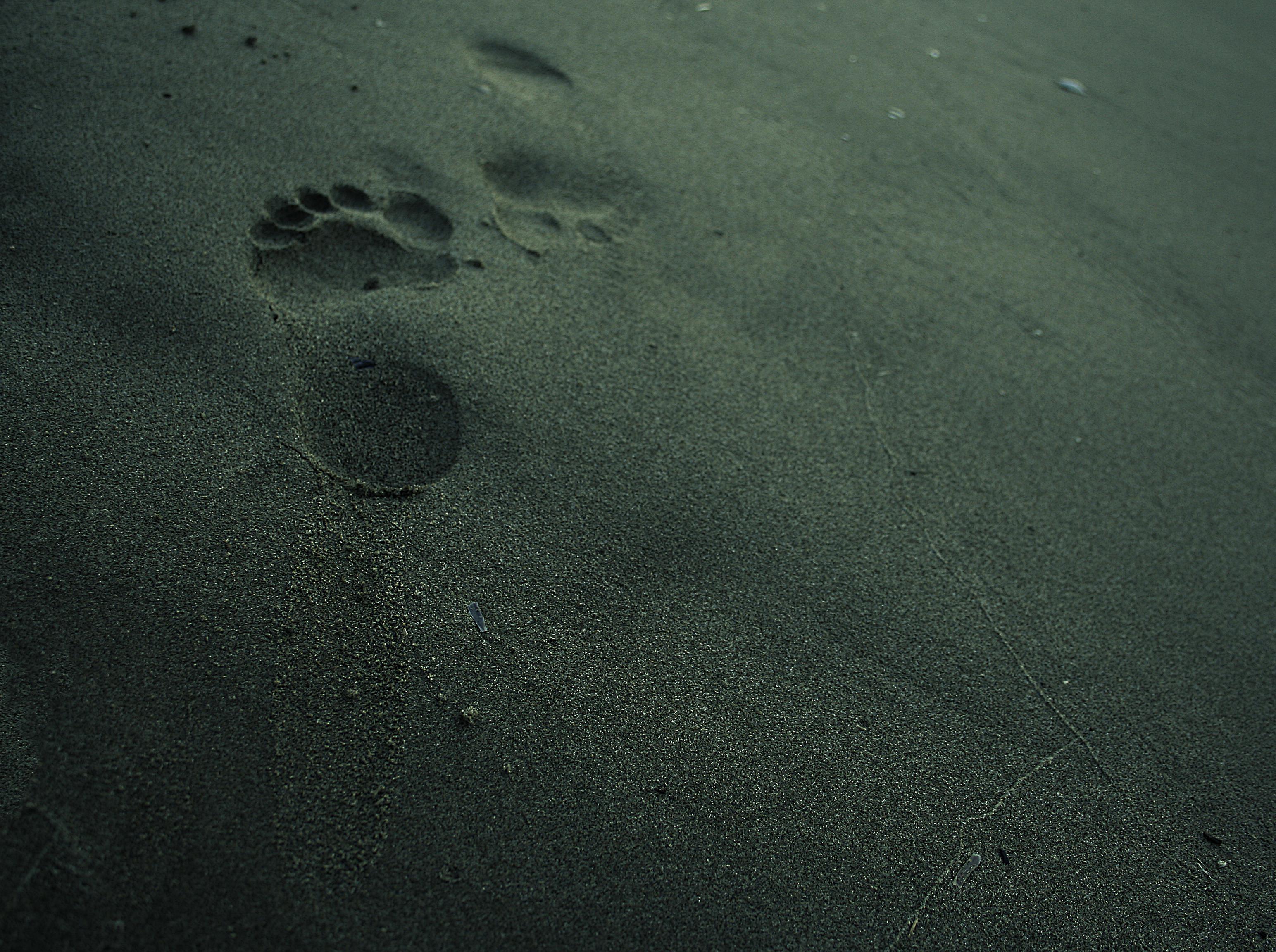 un pas vide