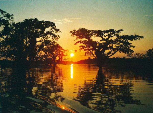 Amazonía Cuyabeno - Ecuador