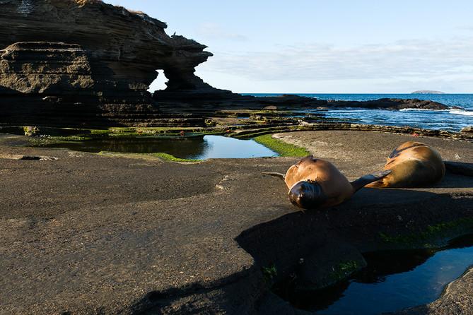 Galápagos ganador de Mejor Destino Turístico