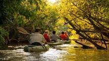 Cotococha, una aventura Amazónica