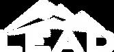 LEAD IT Logo