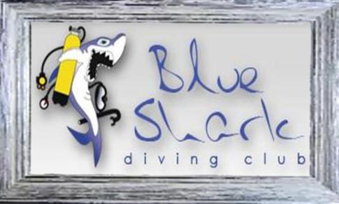 Partner di Cologno Sub in Sicilia per farvi conoscere tutte le piu belle immersioni della zona di Palermo.