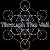 TTV Simple Logo.png