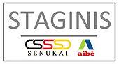 Staginis logotipas