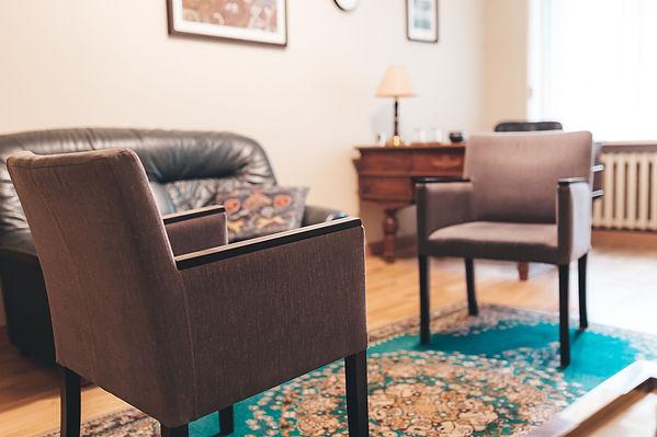 Individualios konsultacijos, porų terapija, grupinė terapija, Paulius Skruibis