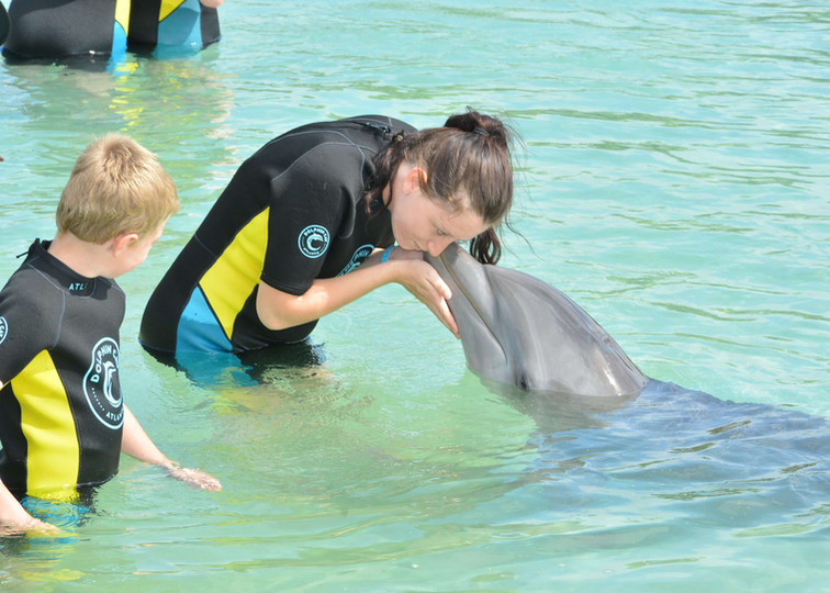 Chloe's sister Sara and nephew Aaron with a new dolphin friend.