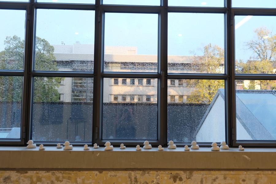 Maastricht Exhibition