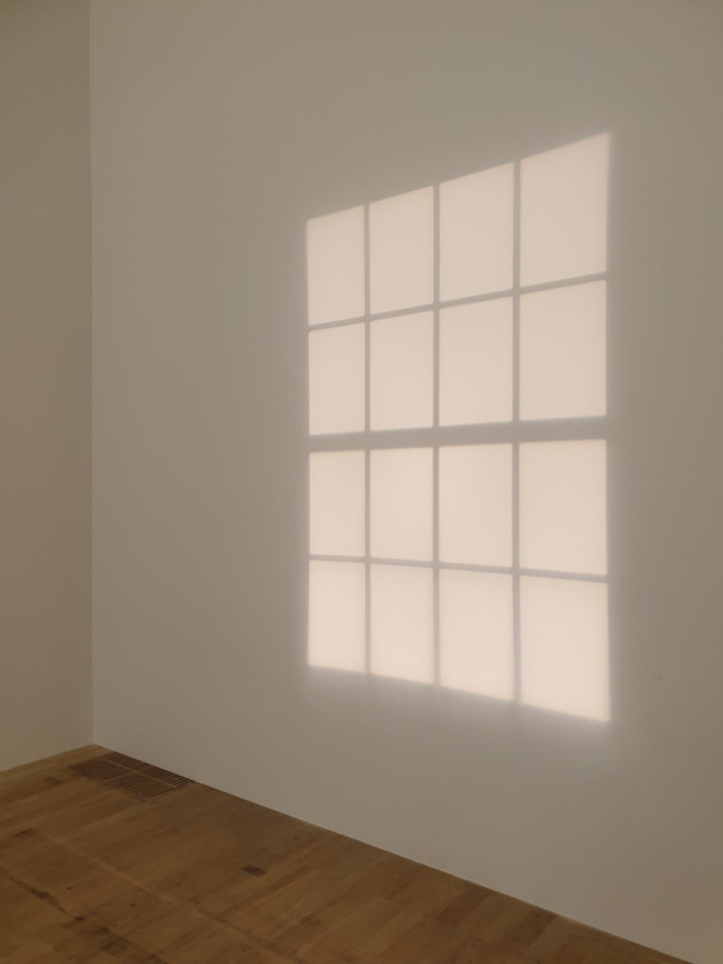 Olafur Eliasson, In Real Life Exhibition, Installation View, 2019