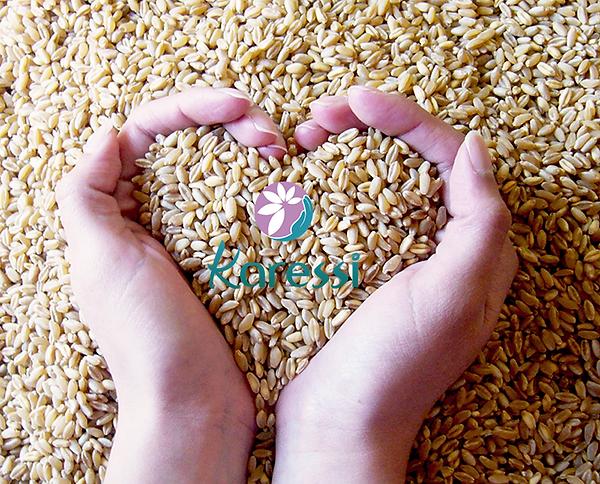 Queines-somos-Corazon-semillas-Karessi.p