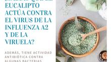 PROTEGE TU CASA DE LA GRIPE CON AROMATERAPIA Y HERBOLARIA