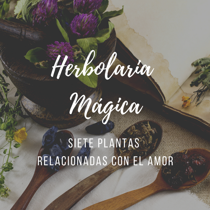 7 Plantas mágicas para el amor