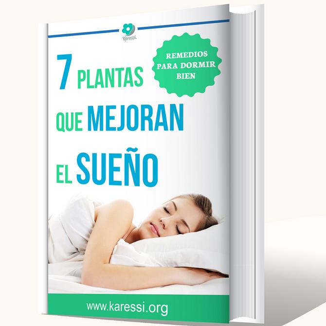 7 PLANTAS QUE MEJORAN EL SUEÑO: Remedios para dormir bien