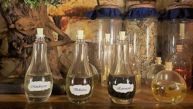 Las plantas de las Brujas para volar: mandrágora, beleño y belladona